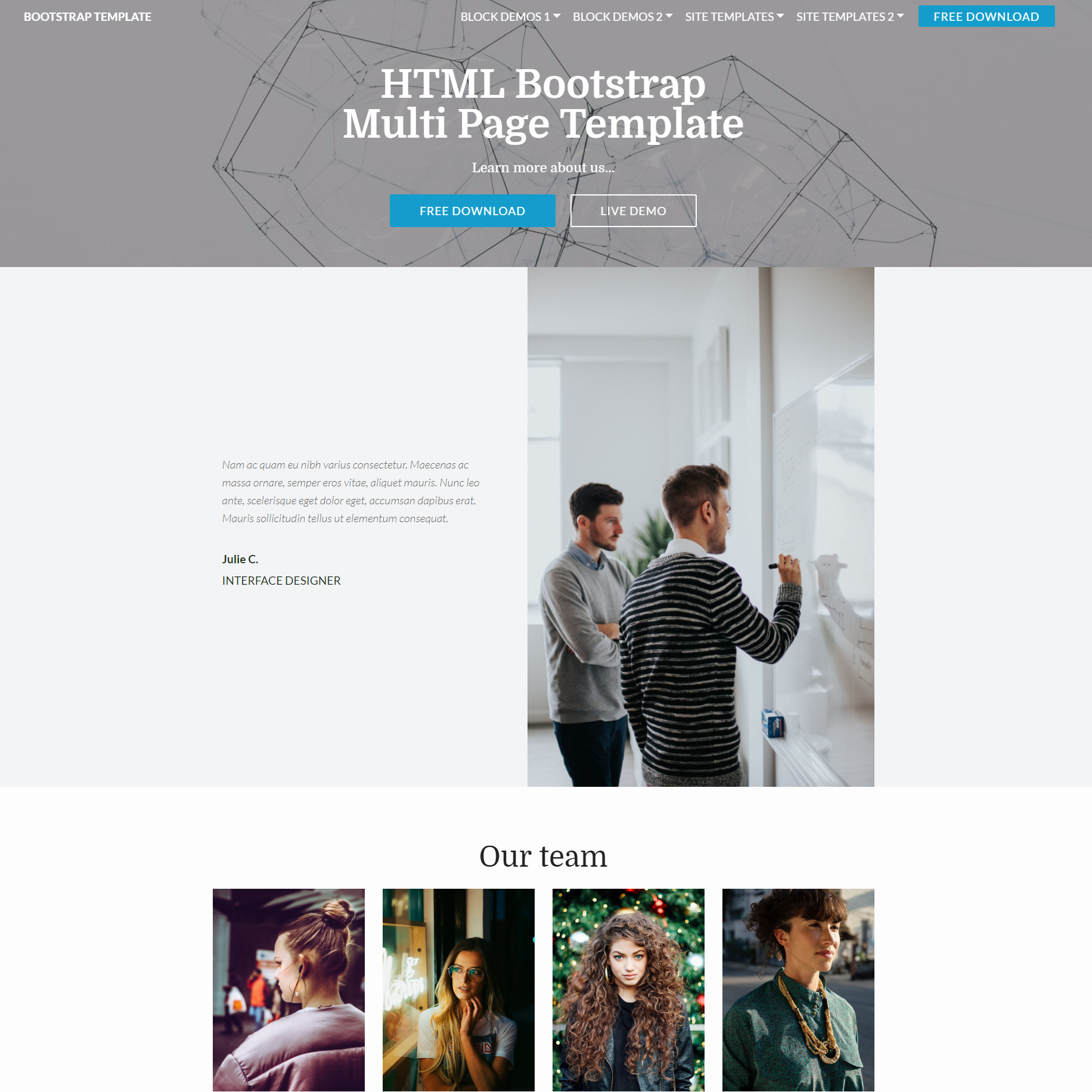 CSS3 Bootstrap Multi page Themes