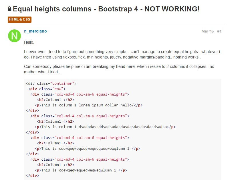 Concern with a heights of the Bootstrap columns