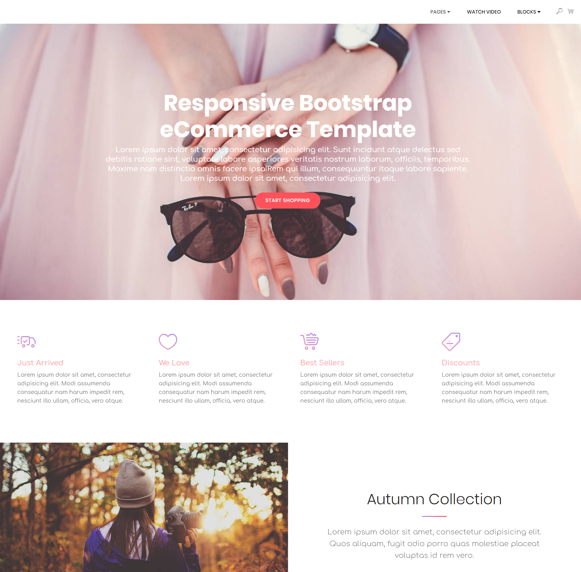 Free Download Bootstrap Responsive eCommerce Templates